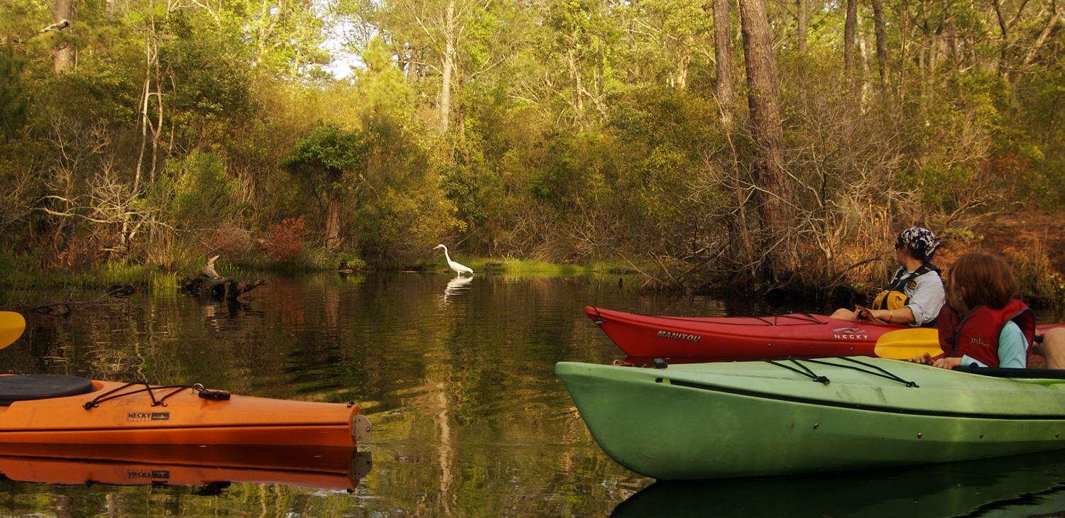 Outer Banks Kayak Tours Sup Tours Outer Banks Nc