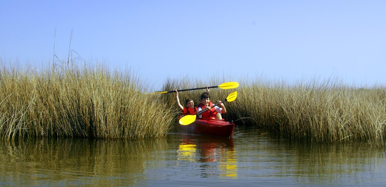 Hatteras Kayak Tours