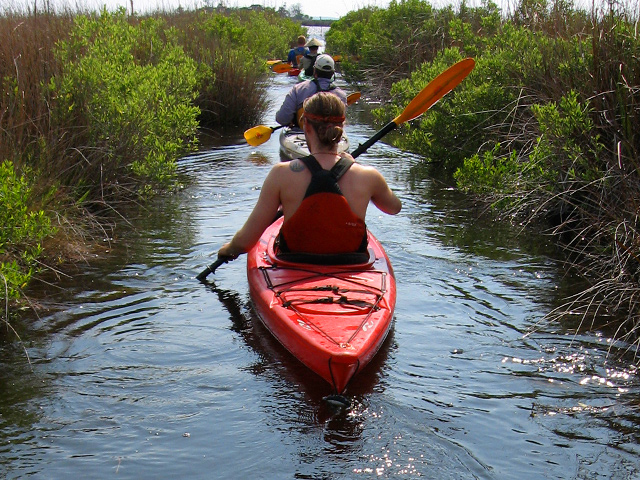 Outer Banks Kayak Tours Coastal Kayak Touring Company Outer