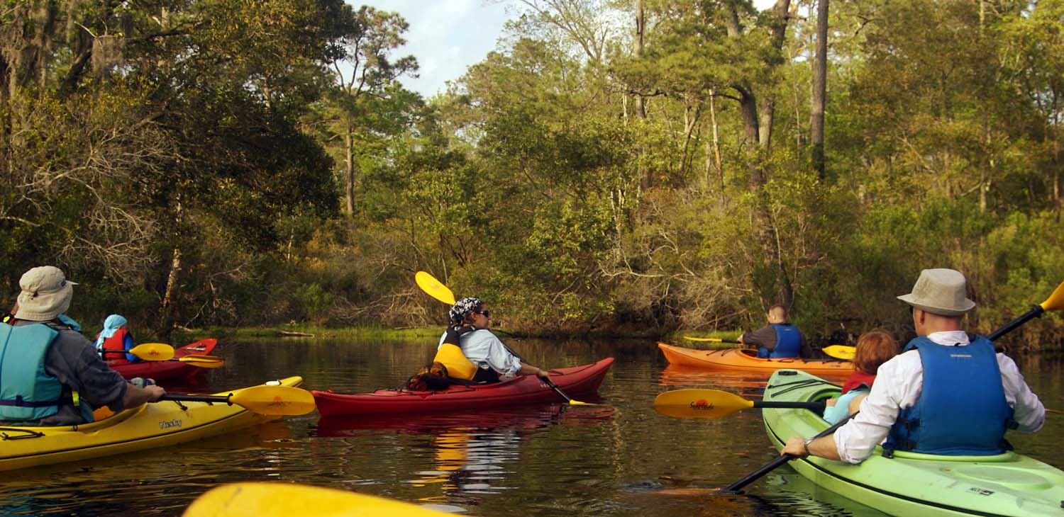 Outer Banks Kayak Tours | Outer Banks | NC Alligator River